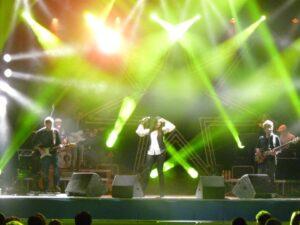 con Luisa Corna   2010   Non si vive in silenzio Tour